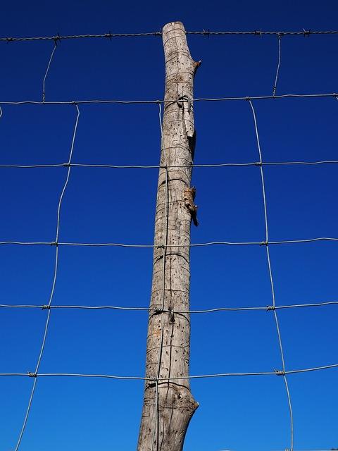crude-fence
